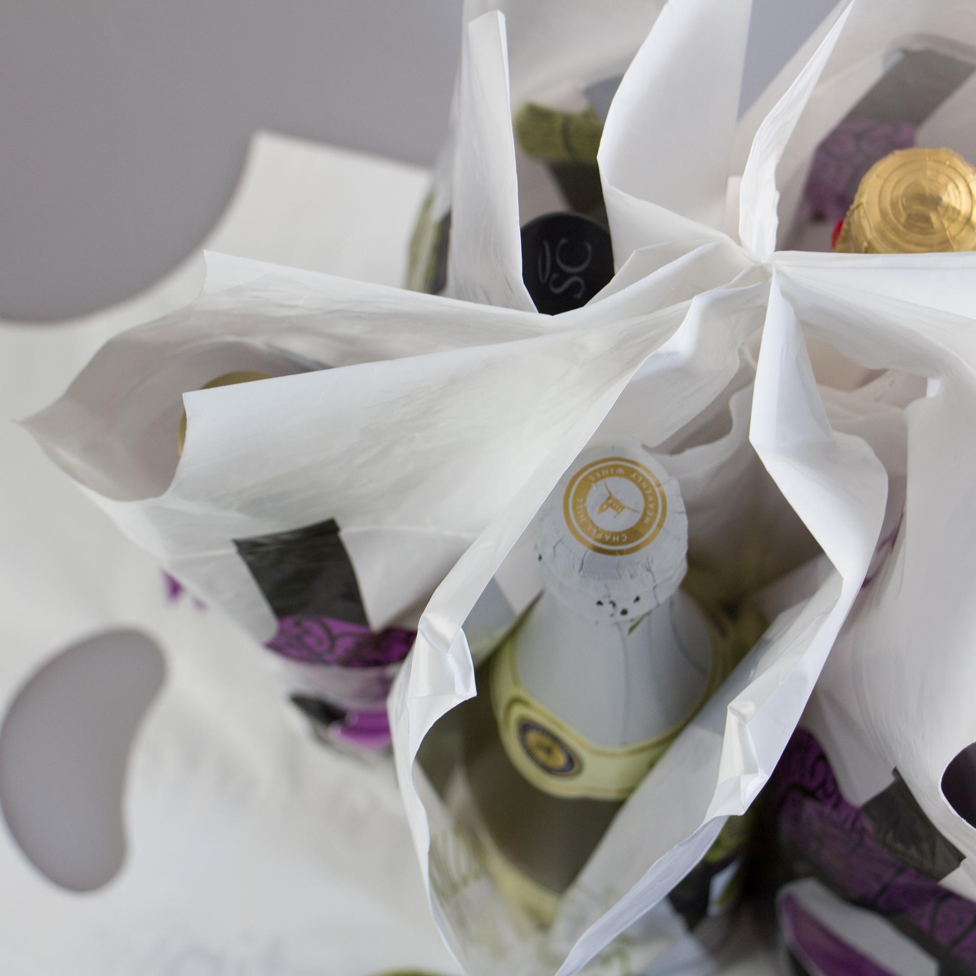 6 bottle wine bag